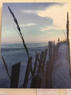 Photograph on canvas by Roxann Yates, $40