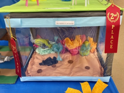 2nd Place 6th-12th Grade: Alexa Littlefield, Aquarium