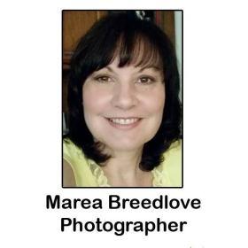 Marea Breedlove